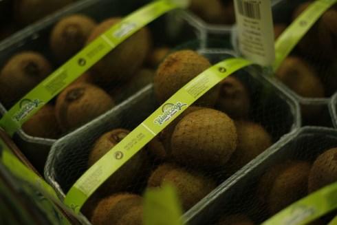 Kiwi – um fruto cada vez mais apetecido, com selo Kiwicoop
