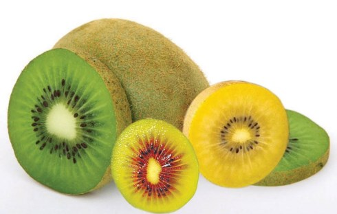 Portugal é o 2.º país da UE onde a população mais come fruta